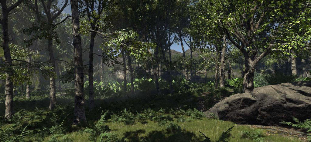 3D Rendering forest environment